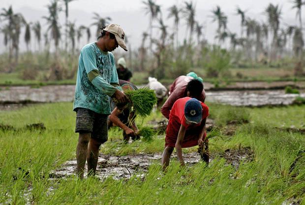 CPA + Davao